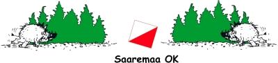 Saaremaa spordiliidu asutajaliige (2002)