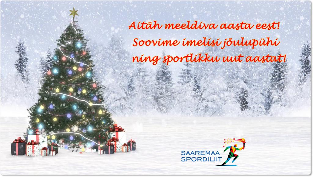 4k-2017-christmas-snow-background_snvsqkael_thumbnail-full01